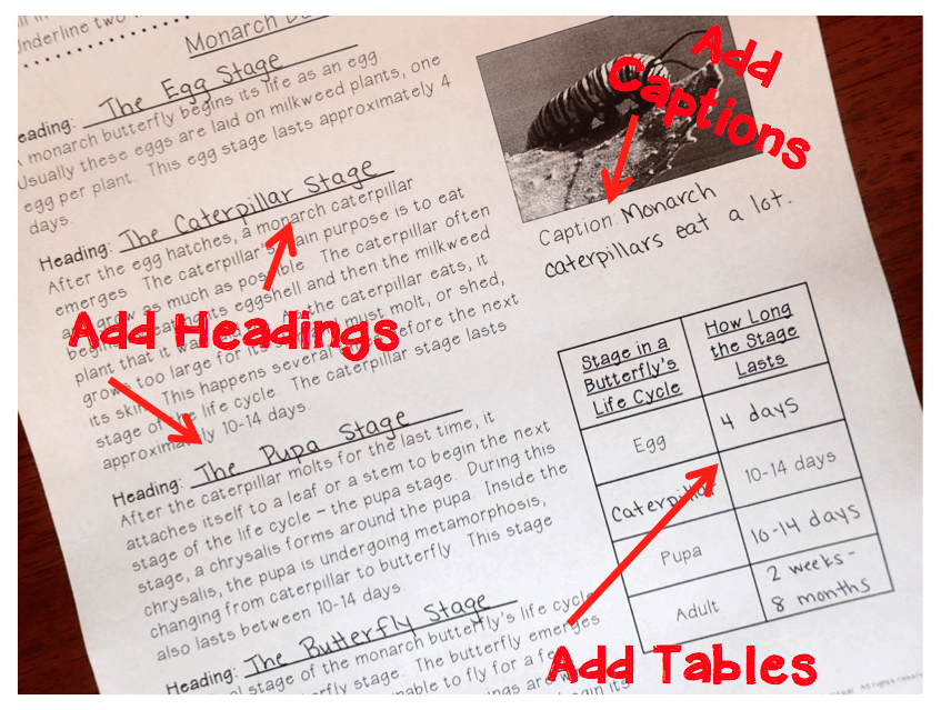 Integrate writing while teaching text features