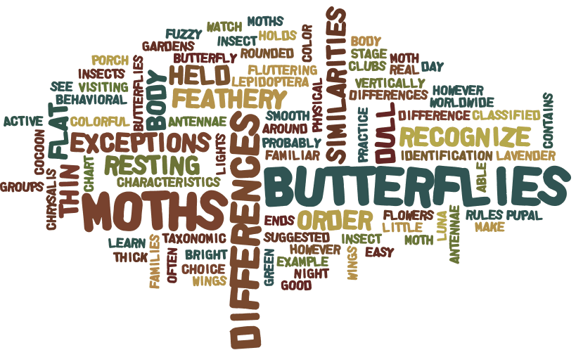 Using Wordle to Teach Main Idea